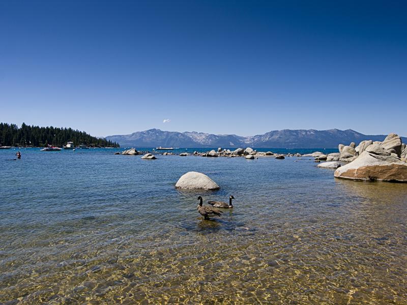 Lake Tahoe II 20100814_5088