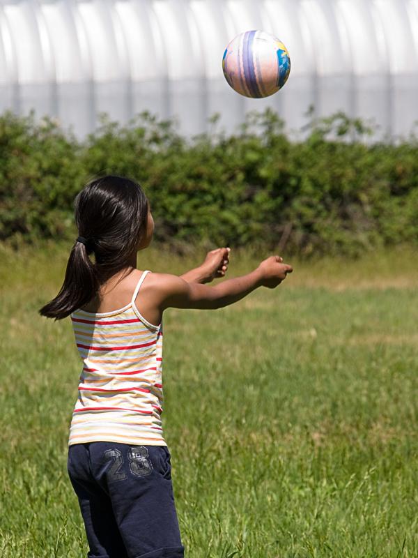 Grass Volleyball 20100530_3331