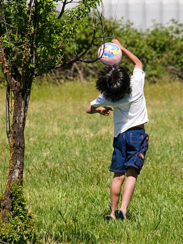 Grass Volleyball 20100530_3373