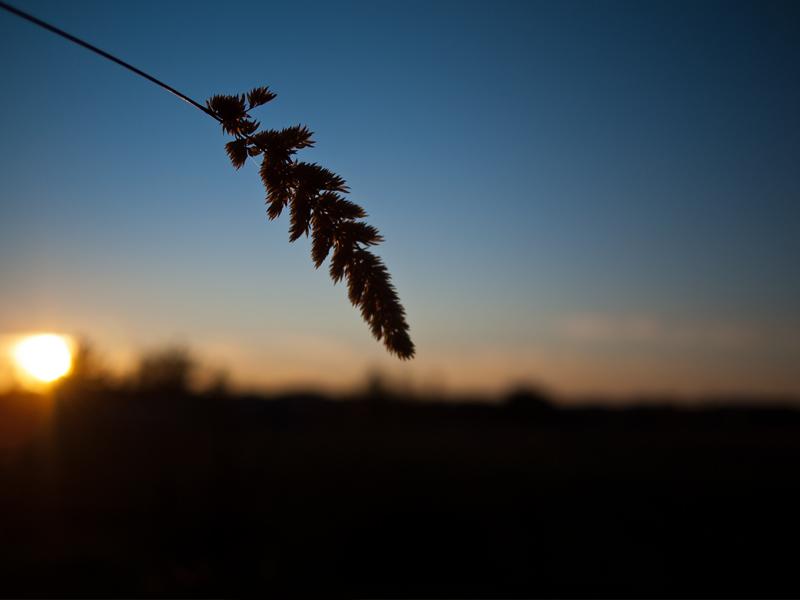 Le soleil se couche 20111222_8498