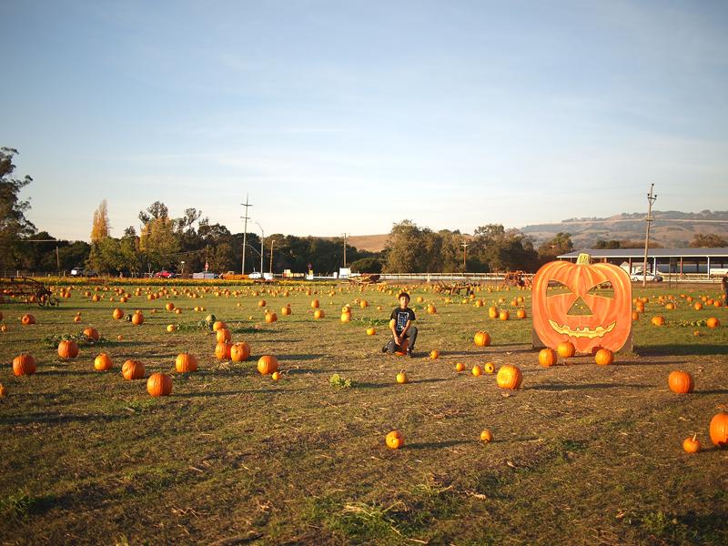 Pumpkin Patch 20111027_5091